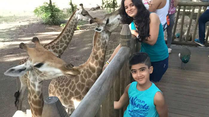 Raj Kumar and his family petting Giraffes at Casela Nature Park
