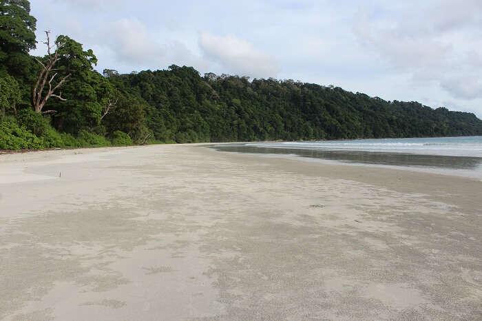 Soft cushioned sand at Radhanagar