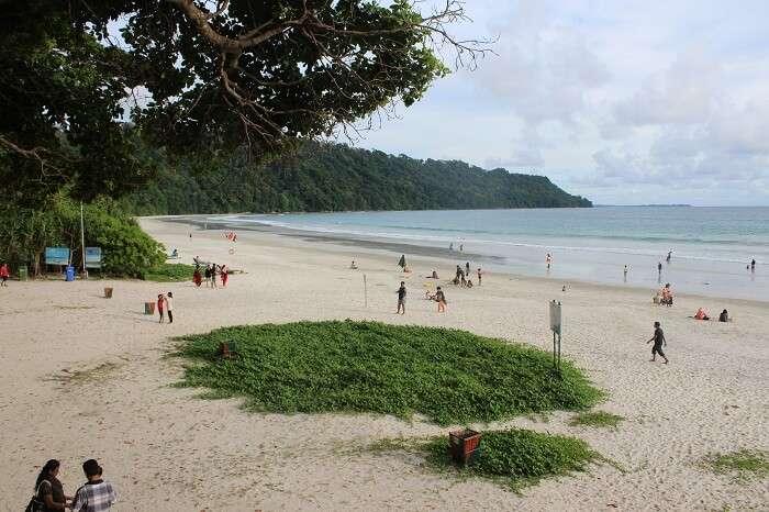 Lookout at Radhanagar Beach