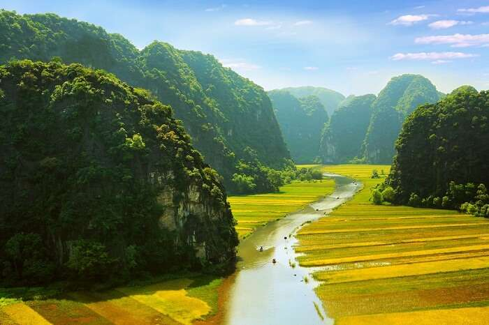 River cutting through the paddy fields of Ninh Binh in Vietnam