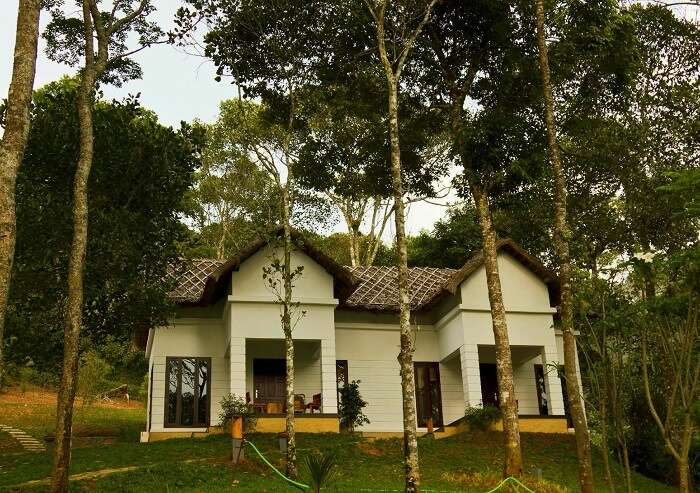 Niraamaya Retreats Cardamom Club is one of the best Ayurveda resorts in Thekkady