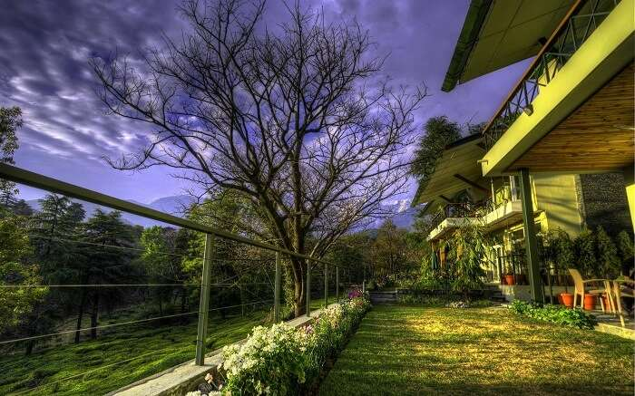 A beautiful snapshot of Norwood Green in Palampur