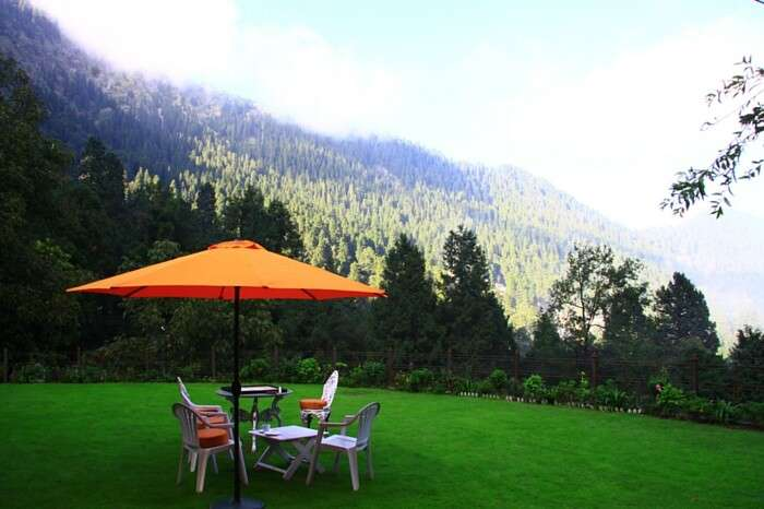 Cafe Chica enveloped by the lush green environs