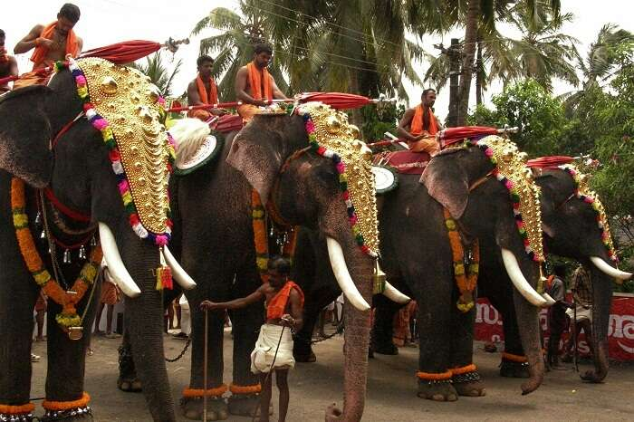 Temple festival flaunts the grandeur of Kerala