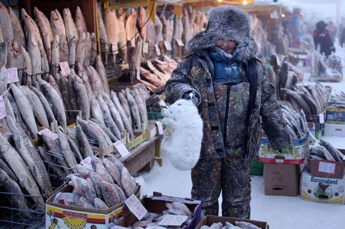 A local buying an arctic hare from the meat vendors in Oymyakon in winters