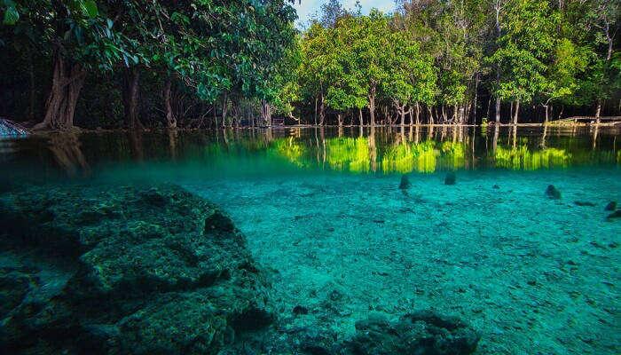 Thung Teao Natural park