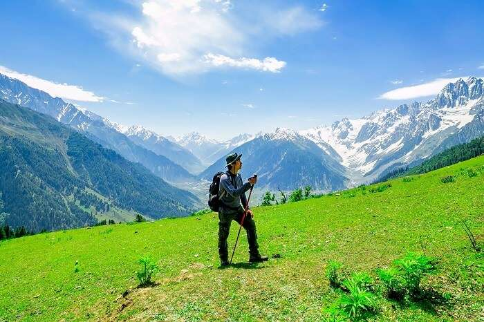 A tourist takes a trek to Sonamarg