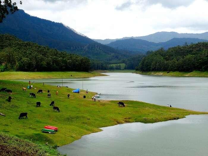Beautiful landscape of Kerala