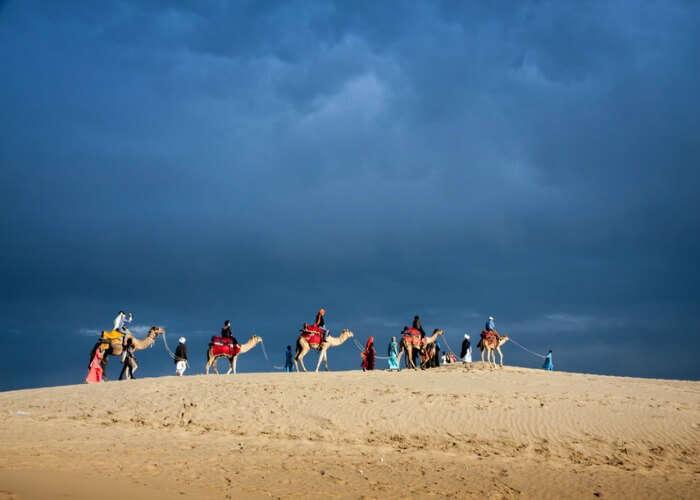 Take pleasure in the desert safari