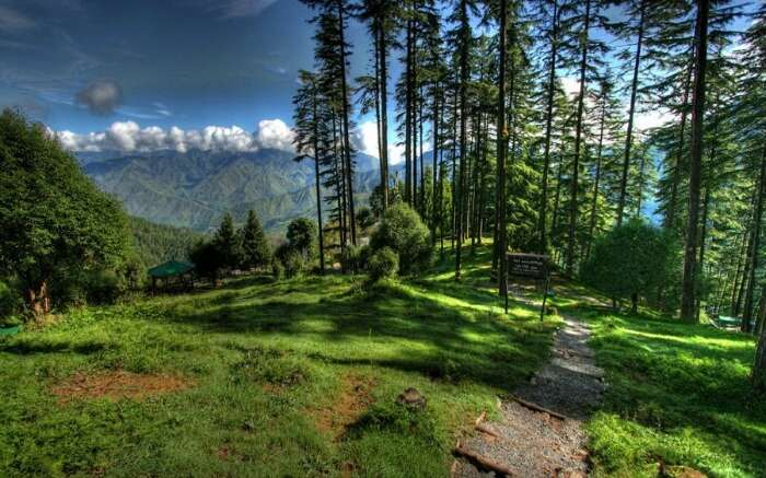 One of the beautiful views in Dhanaulti