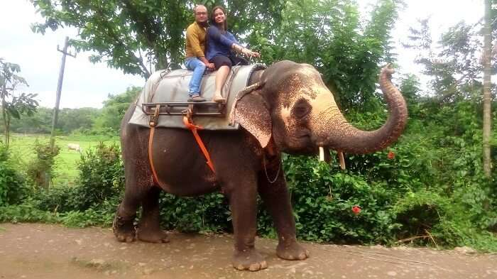 Having a cheerful time in the elephant ride