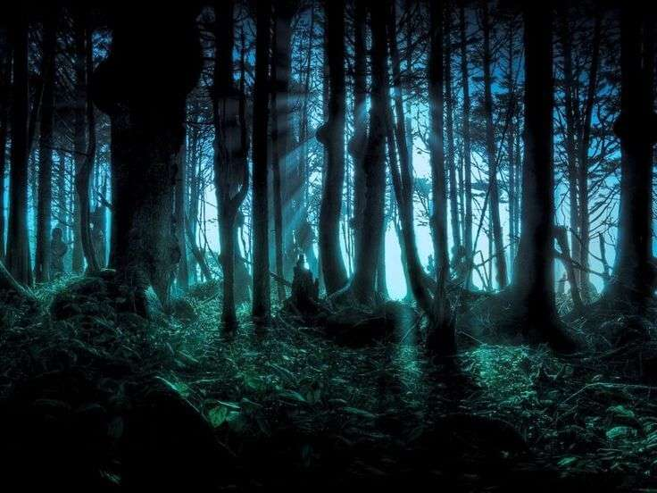 Darkness in Sherwood Forest