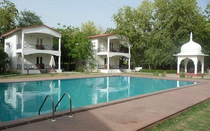 Swimming pool at Tiger Den Resort in Ranthambore