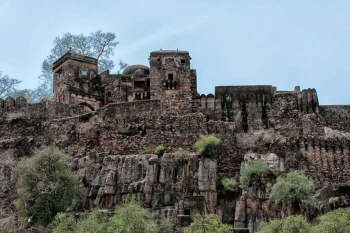 A glorious view of the Ranthambore Fort