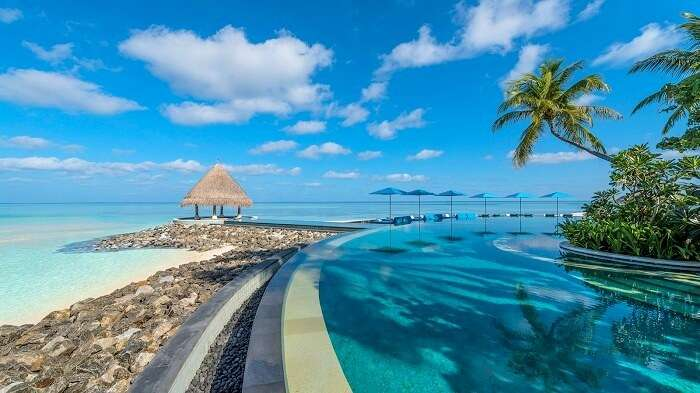 Pool overlooking the ocean at Four Seasons Resort Maldives