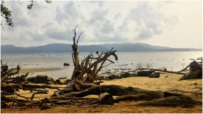 Beautiful beaches of Andaman