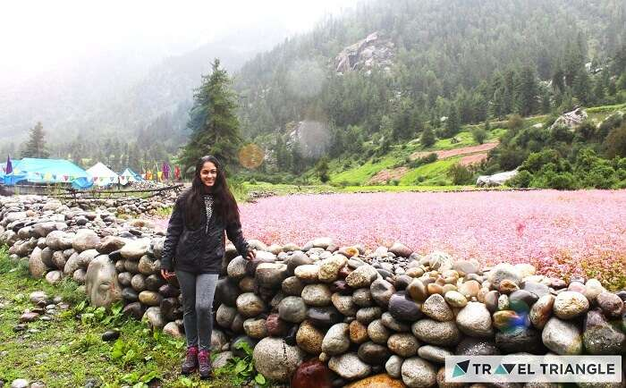 Lehan amidst rivers and mountains of Himachal