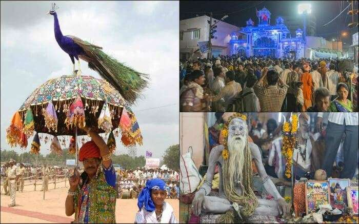 A glimpse of Bhavnath Fair