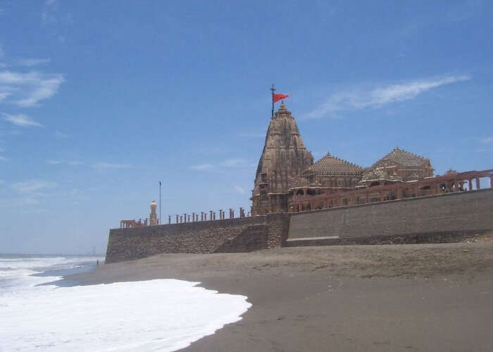 Spot various sea creatures on the shallow shores of Dwarka