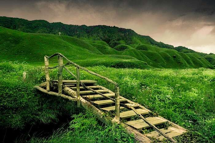 A bridge in the middle of the lush green Dzukou Valley in Nagaland
