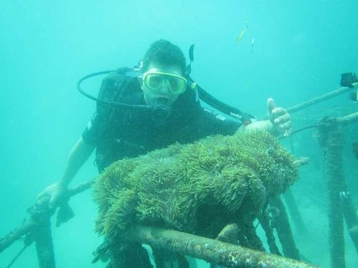 Kuta Scuba Diving