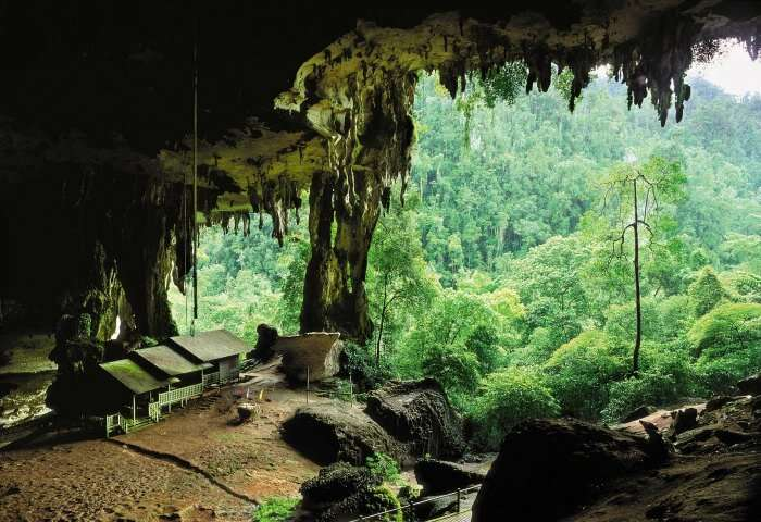 The caves inside the Gunung Mulu National Park In Thailand