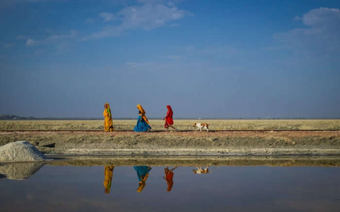 Local women walking beside the Sambhar Salt Lake
