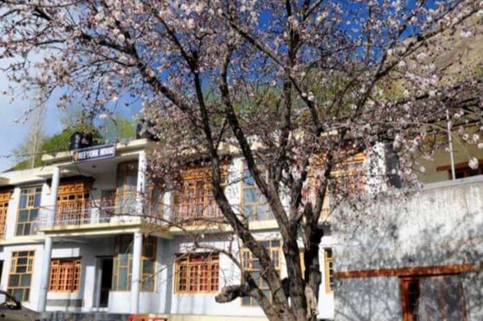 Outside view of Reeyork homestay in Leh
