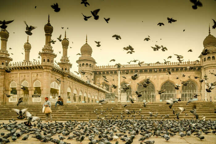 Men feeding pigeons in front of Mecca Masjid in Hyderabad