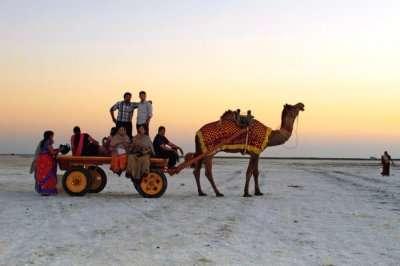 People enjoying camel cart ride in Rann of Kutch