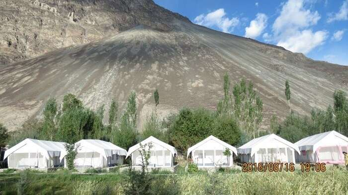 Camping near Pangong lake