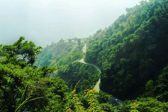 the roads winding through lush hills