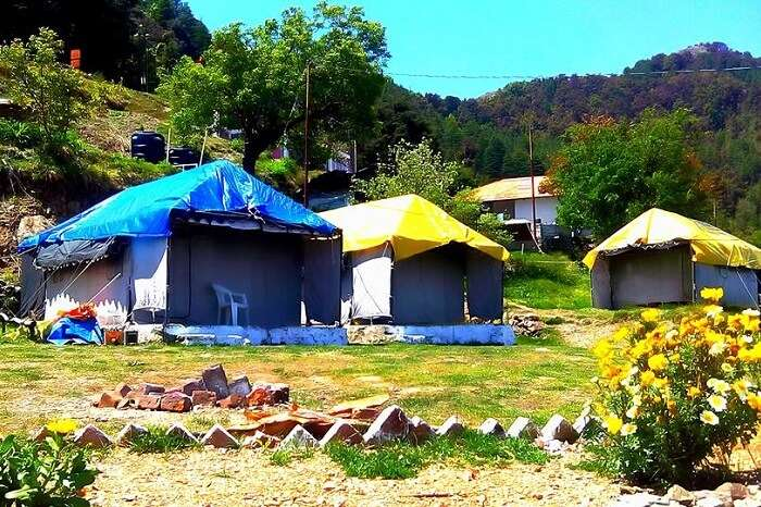 a shot of the main camping site at Camp Dhanaulti Magic