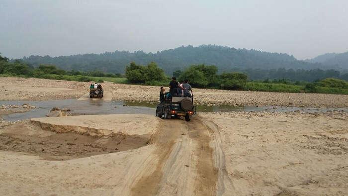 River ride in the jungle Safari