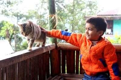 Amit's son making new friends
