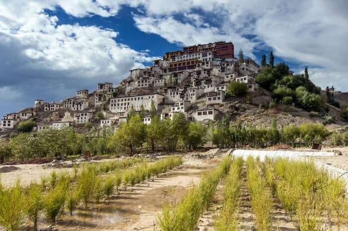 Thiksey Monastery atop a hill