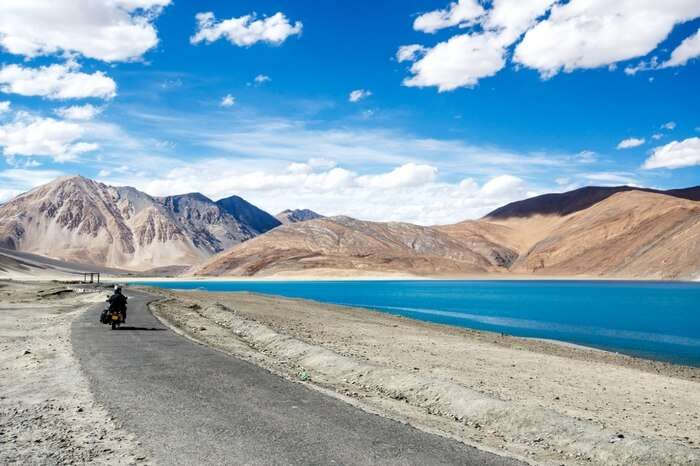 A traveler heading to Pangong Tso