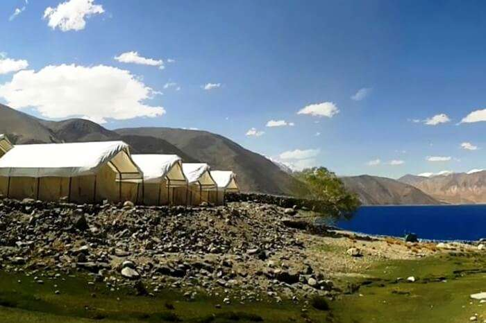 Camp Redstart by the shores of Pangong lake