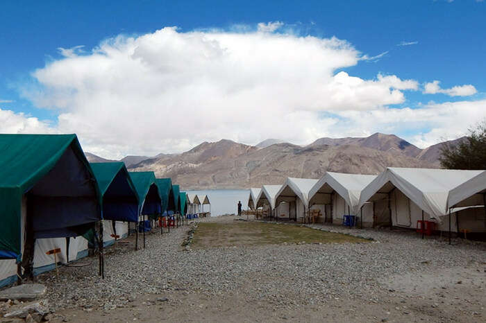 Wonderland Camp overlooking the Pangong lake in Leh