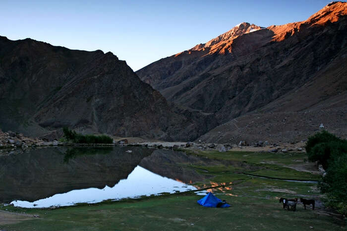 A campsite in Reru village in Zanskar Valley