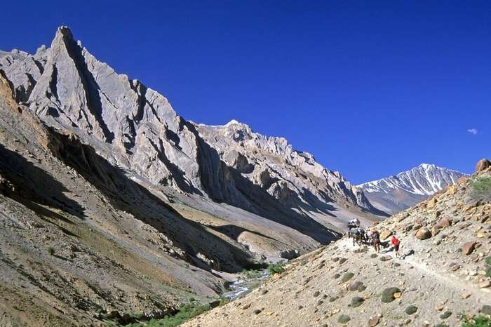 Trekkers walking the Zanskar Trek trails