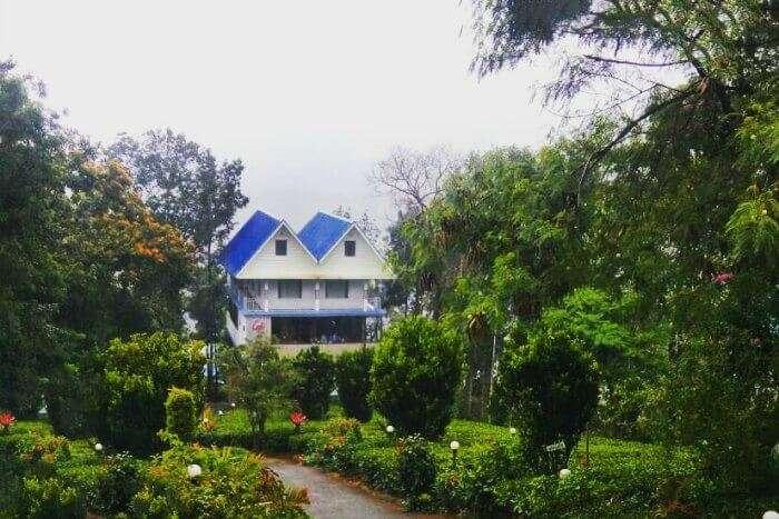 anuj's hotel in Munnar, Kerala