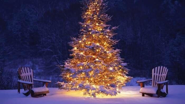 christmas in manali & go skiing
