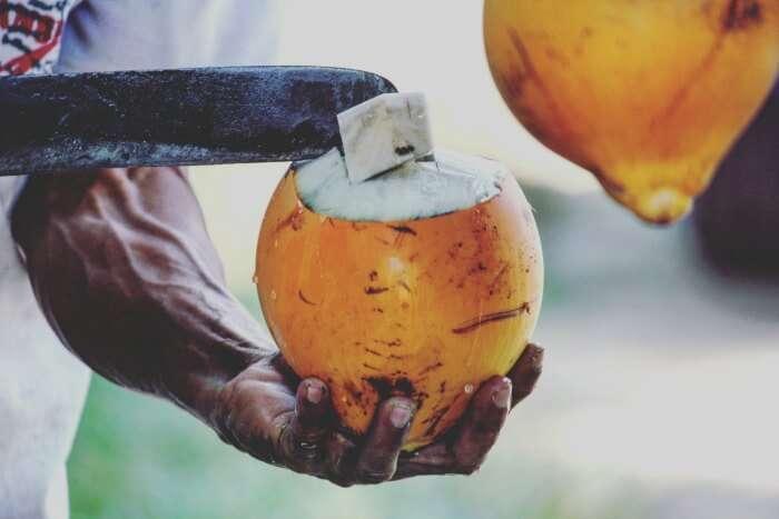 having tangy coconuts in sri lanka