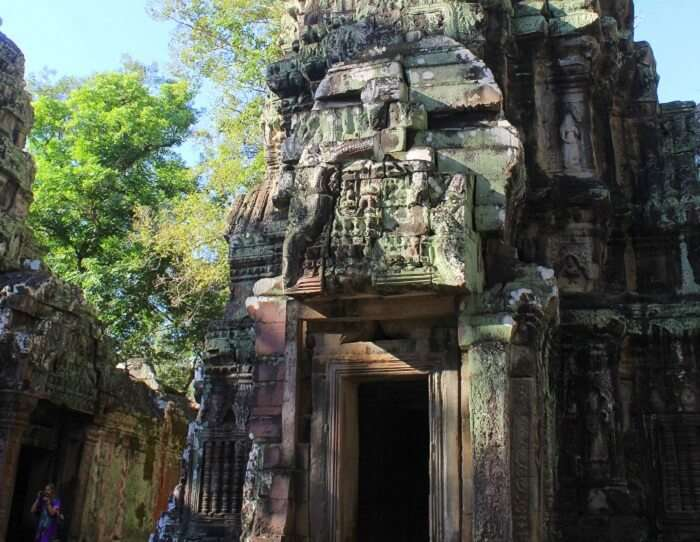 Beauty of Ta Phrom Temple