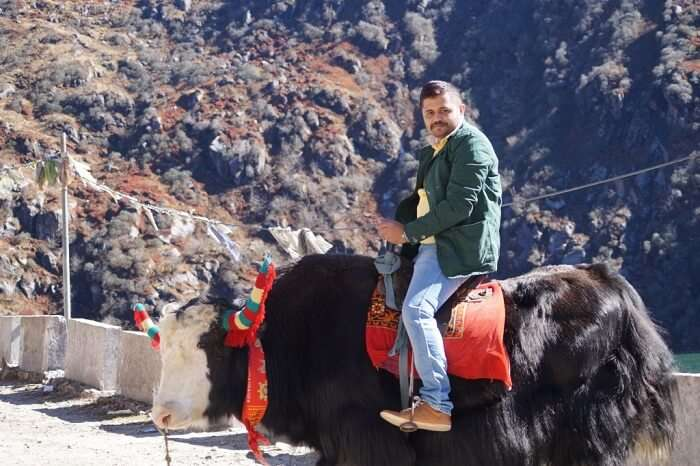 Riding a yak in picturesque Sikkim