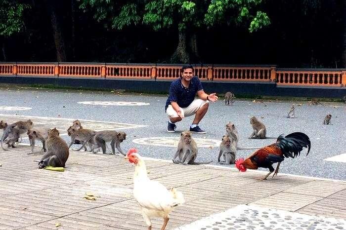 Feeding the monkeys in Ubud