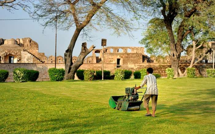 A gardener is cleaning lawn with mower in the Jhansi Fort