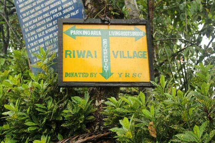 Signboard showing the path leading to Living Root Bridge in Mawlynnong