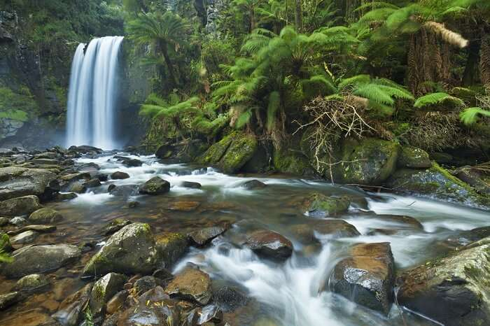 Serene Hopetoun Falls in the Great Otway National Park in Victoria